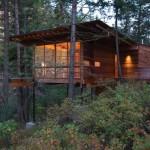 บ้านไม้กลางป่า
